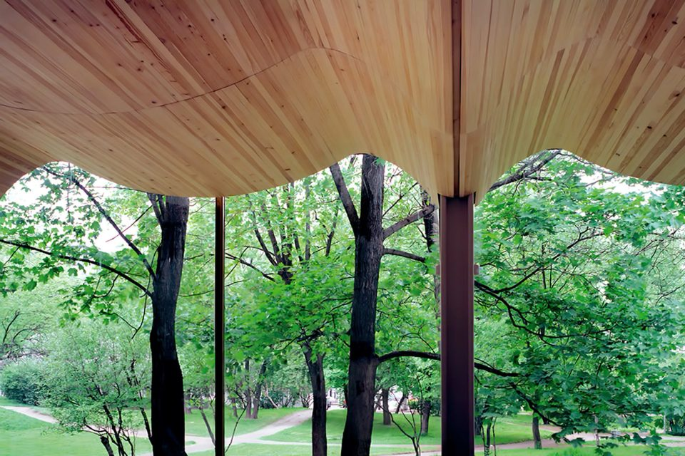curved-wood-ceiling-aalto